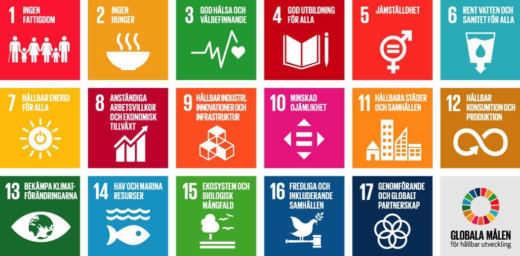 FN:s globala mål – här börjar flera företags hållbarhetsarbete
